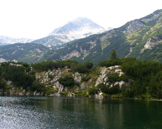 """Заповедник """"Сребрана"""" - уникальный уголок болгарской природы"""
