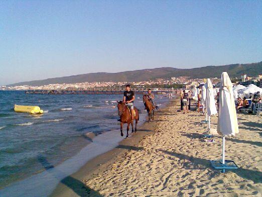 Кроме пляжного отдыха на курорте можно заняться дайвингом, покататься на карте или же водном мотоцикле, отправиться на конную прогулку..
