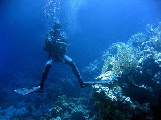 Любителям погружений стоит отправиться в Albena Diving Centre - море позитива гарантированно!