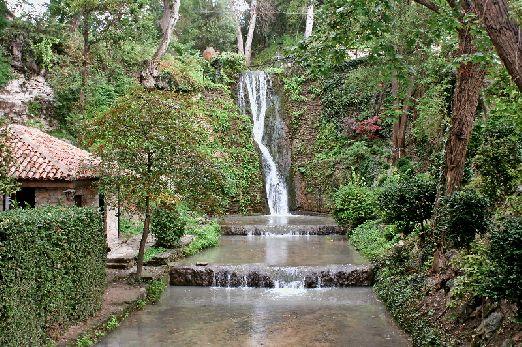 В ботаническом саду много удивительных вещей, как, например, этот прекрасный водопад